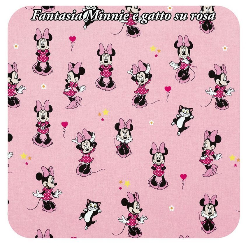Fantasia MInnie e gatto su rosa